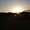 IAIS_QJ_s_at_sundown___WB__.jpg