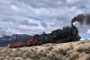 93 at Steptoe Creek_DSC2860